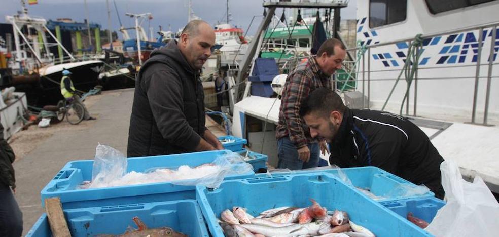 La Región duplica las descargas pesqueras de enero a agosto con respecto a 2016