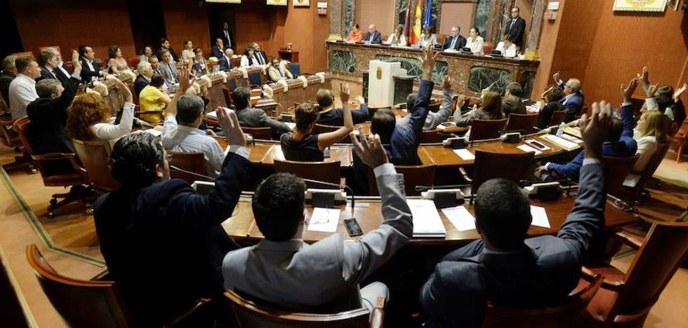 La Asamblea Regional exige que no se realice «jamás» ninguna amnistía fiscal