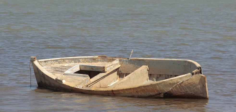 El Gobierno regional urge al Comité Científico a emitir su informe sobre el Mar Menor