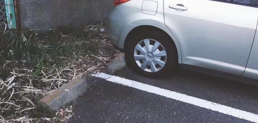 Dar un golpecito en el capó de tu coche antes de arrancarlo podría salvar una vida