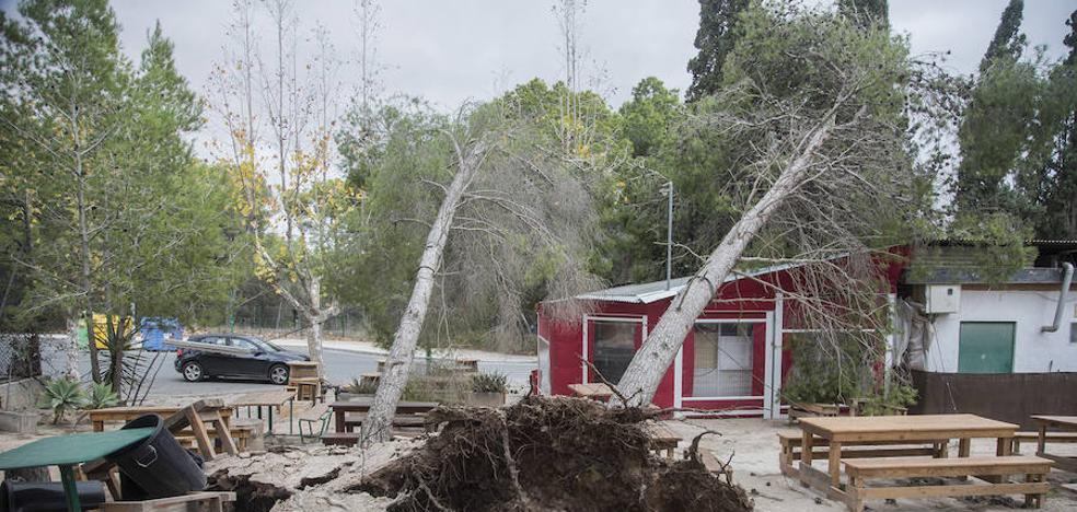 El temporal de viento provoca centenares de desperfectos en calles y el cierre del puerto