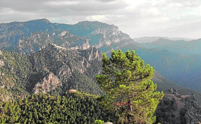 'Canalejas' difunde los valores de la Sierra del Segura entre los estudiantes