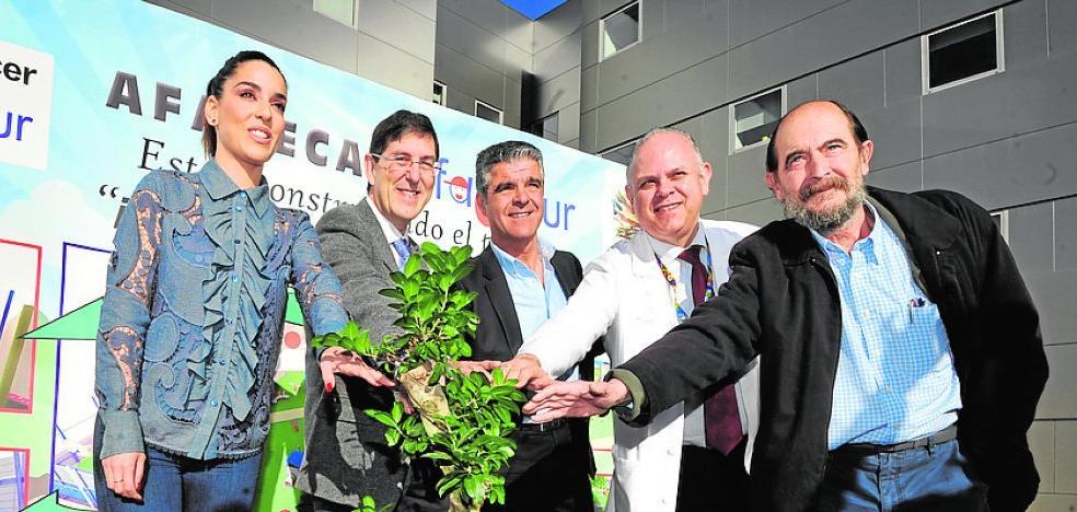 Niños hospitalizados de La Arrixaca estrenarán parque en cuatro meses