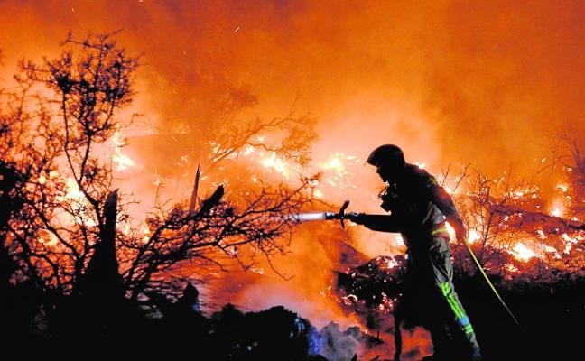 Las llamas devoran casi 8 hectáreas en El Garruchal