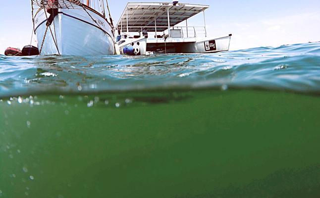 El fiscal señala a Cerdá y a la antigua cúpula de la CHS por la degradación del Mar Menor