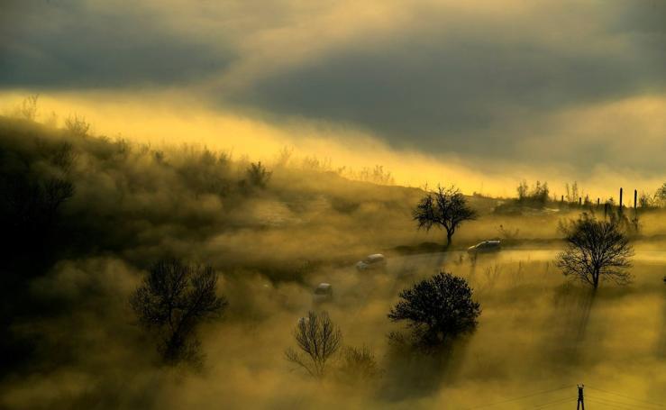 'Bonita' contaminación