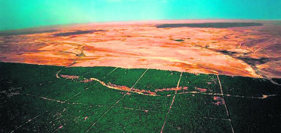 La gran muralla verde africana
