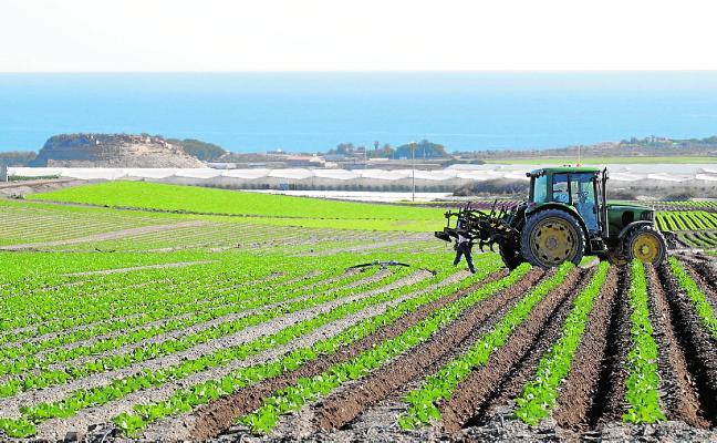 Los agricultores de la Marina de Cope se unen frente a las denuncias ambientales