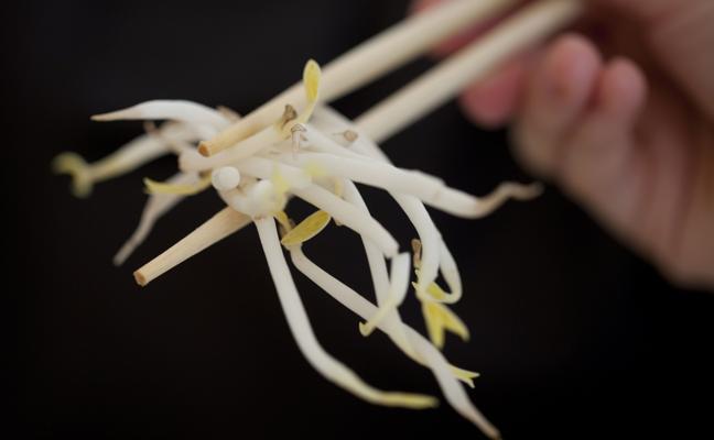 Consumir alimentos con soja puede reducir los efectos secundarios del tratamiento contra el cáncer de mama