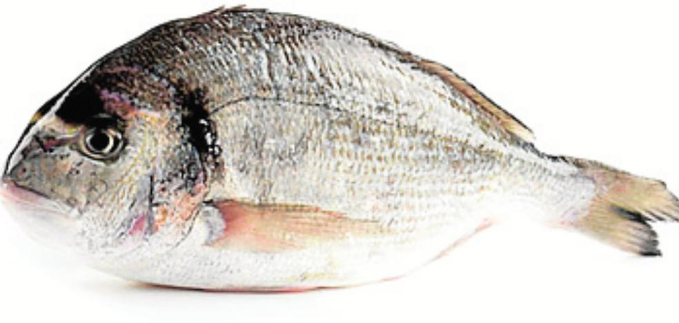La abundancia de lenguado y lubina del Mar Menor modera sus precios