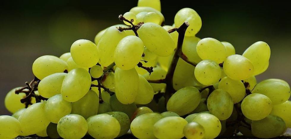 Comer uvas es la tercera causa de muerte en menores de cinco años