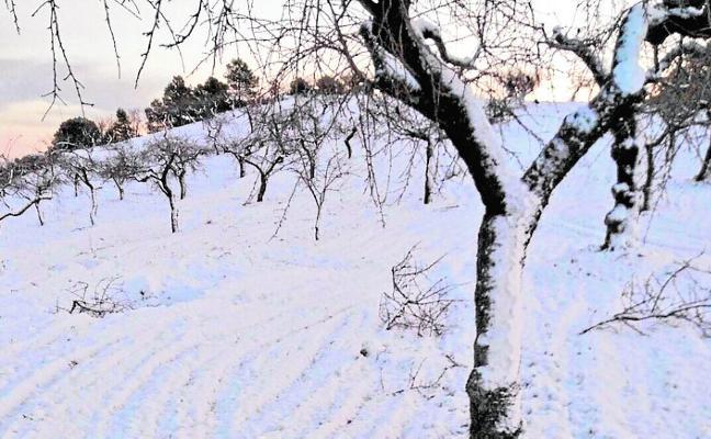 La nieve llega al Altiplano, a Sierra Espuña y a pedanías altas de Lorca