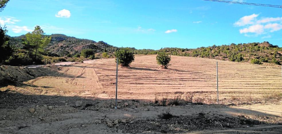 Denuncian roturaciones ilegales para convertir en regadío 14 hectáreas en la sierra de Altaona