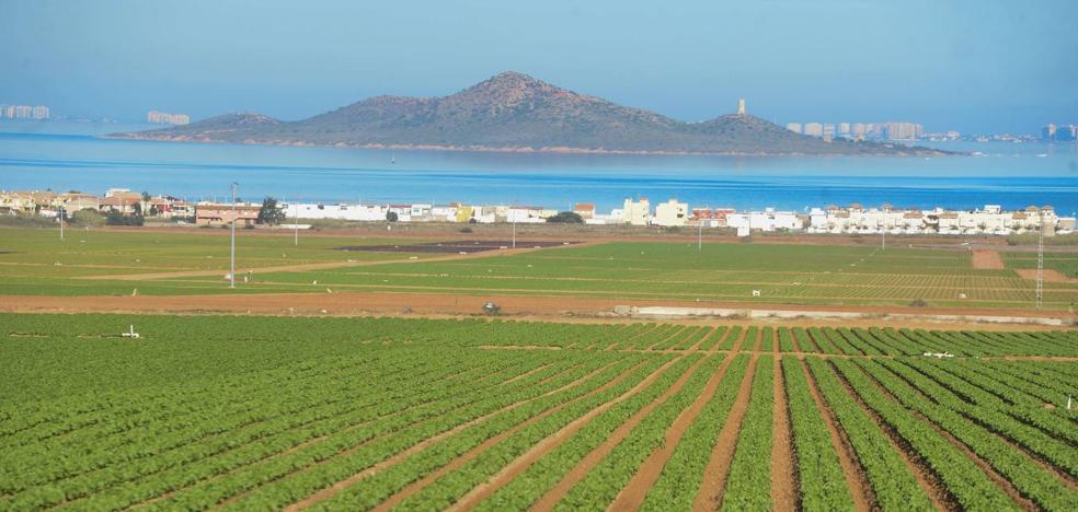Fecoam y Coag piden una ley para el Mar Menor que no culpabilice solo a la agricultura