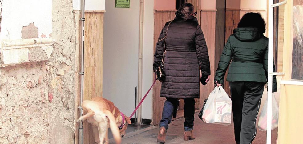 Cruzada contra los orines de perros