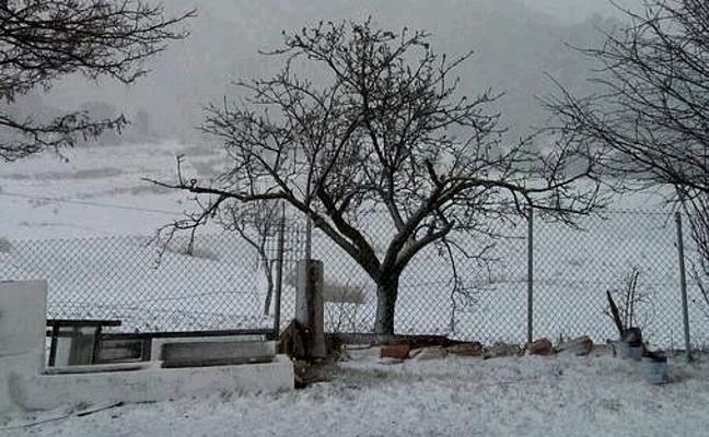 La nieve vuelve a cubrir el Noroeste