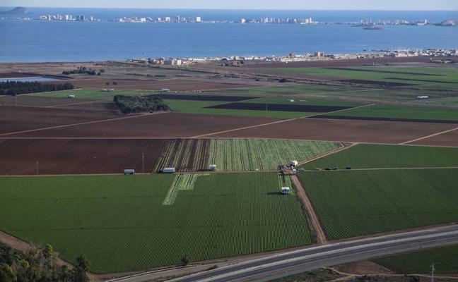 Aprobadas las enmiendas a la ley de Medidas Urgentes del Mar Menor más restrictivas para la agricultura