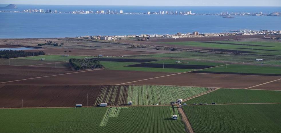 Así se alejarán los cultivos del Mar Menor