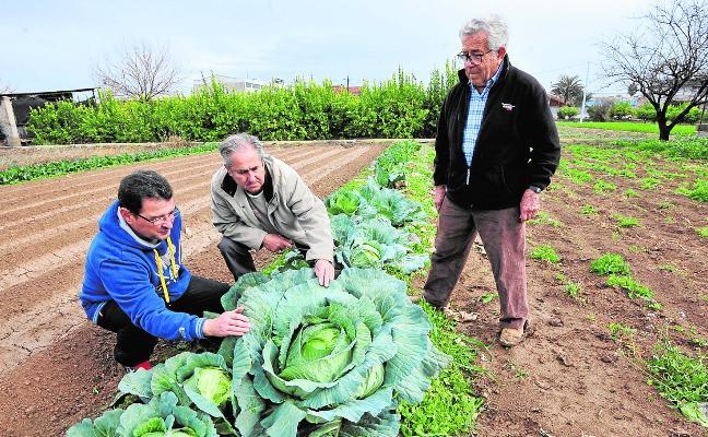 La agricultura que sienta bien