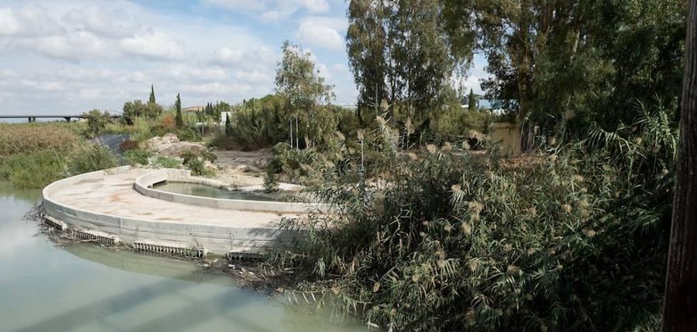 Cambiemos Murcia exije la paralización de la limpieza de cañas en la Contraparada