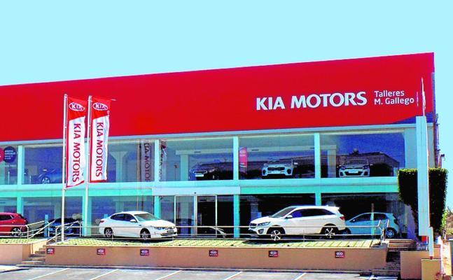 Talleres M. Gallego bate su récord anual de ventas de Kia en la Región