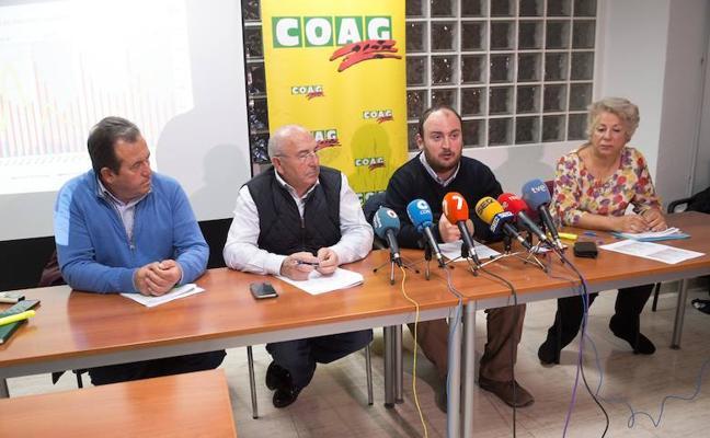 COAG reclama la regulación de los precios de la fruta para «evitar que el sector se vaya a pique»
