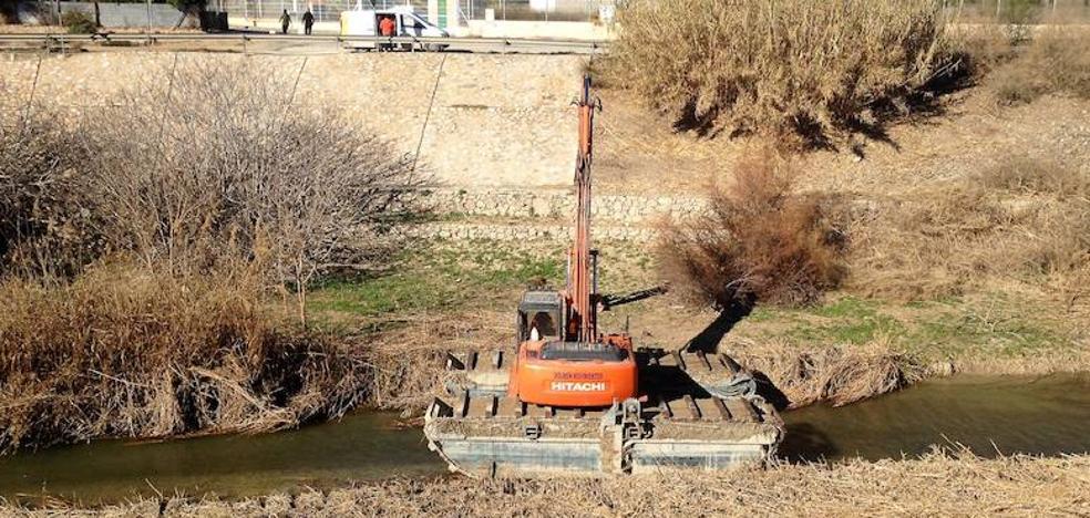 El PSOE denuncia ante el Seprona el «destrozo» del cauce del río Segura