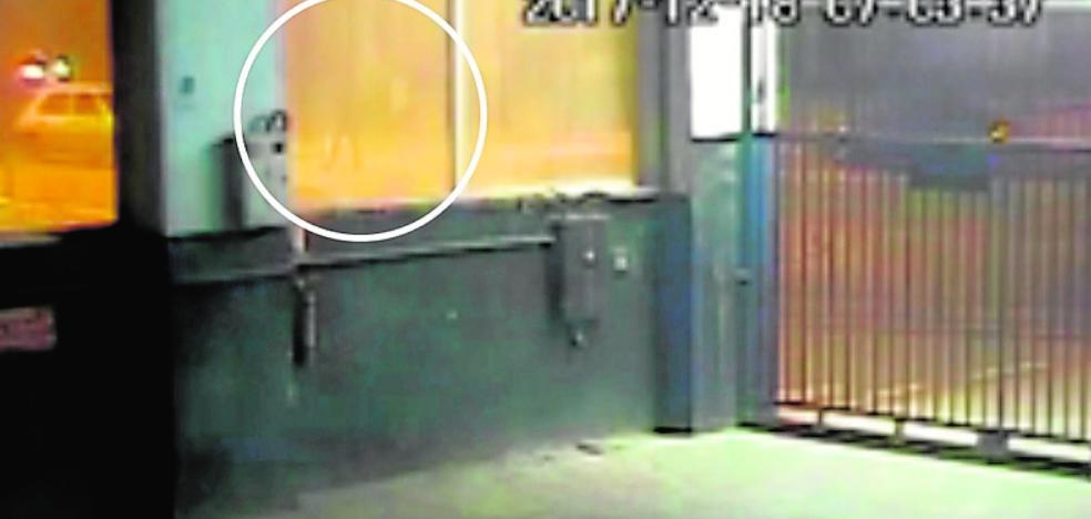 La Policía de Alhama localiza a un conductor que huyó tras arrollar a un peatón en un paso de cebra