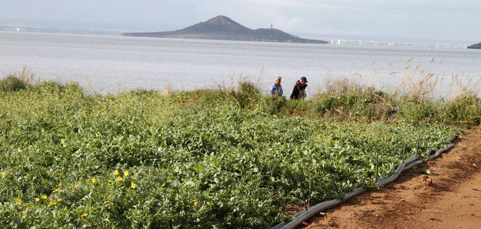 PSOE y Cs apoyarán todas las enmiendas al decreto del Mar Menor