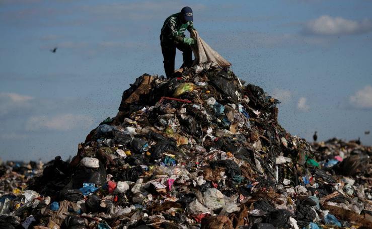 Buscando en la basura