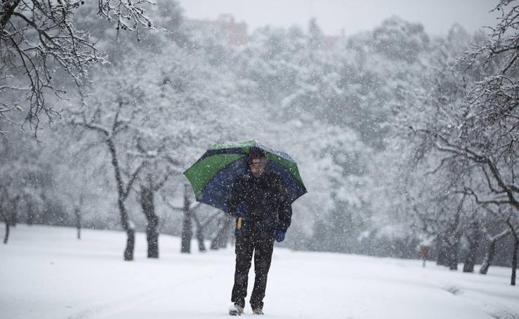 La nevada en imágenes