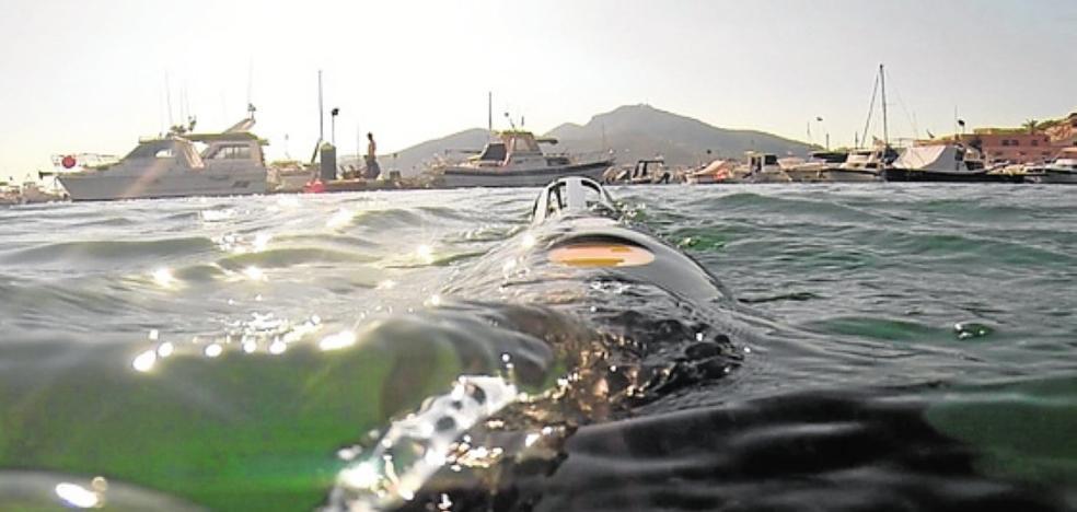 La Cátedra de Medio Ambiente impulsa un proyecto para medir los ruidos bajo el mar