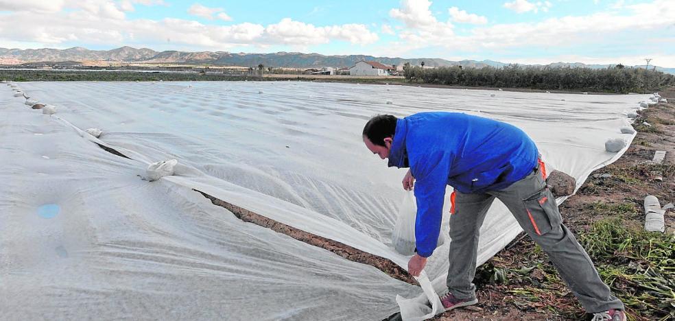 Los daños en el campo por granizo, heladas y tormentas sumaron 18 millones en 2017