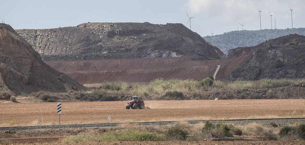 Medio Ambiente finaliza el vallado y la reforestación de la balsa Yenny en Llano del Beal
