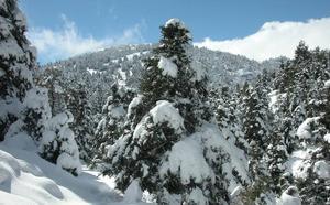 La Sierra de las Nieves, decimosexto parque nacional