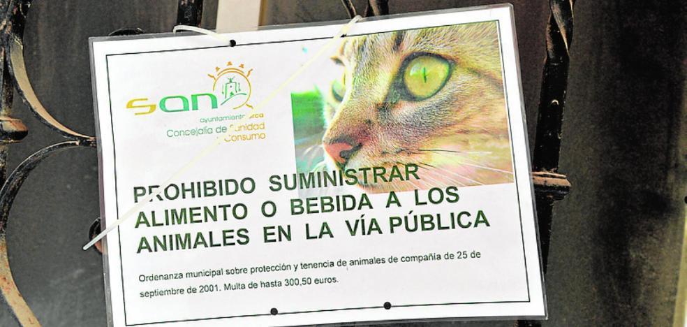 Multas de hasta 300 euros por suministrar comida a animales en la vía pública