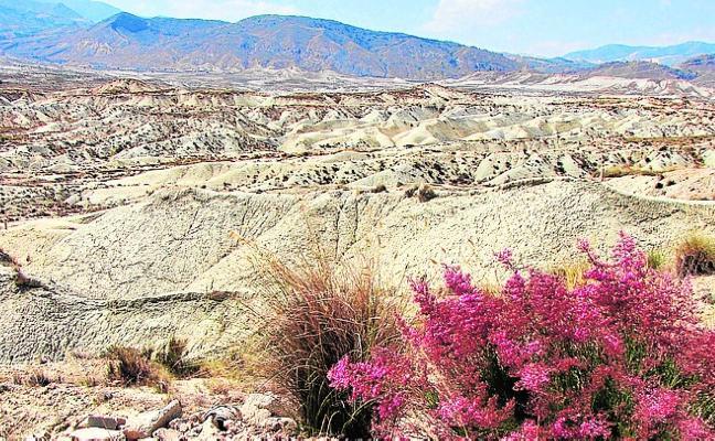 El Ayuntamiento de Abanilla se apunta a la custodia del territorio para proteger el medio natural