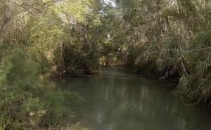Segura, las voces del río