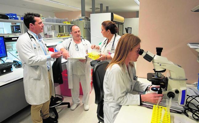 Los casos de virus del sida crecen un 35% en un año por falta de campañas de prevención