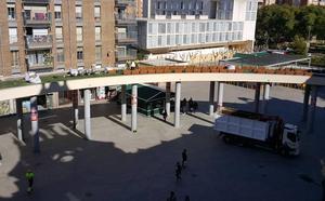 El Ayuntamiento embellece la Plaza de la Universidad con la plantación de vegetación en su pérgola