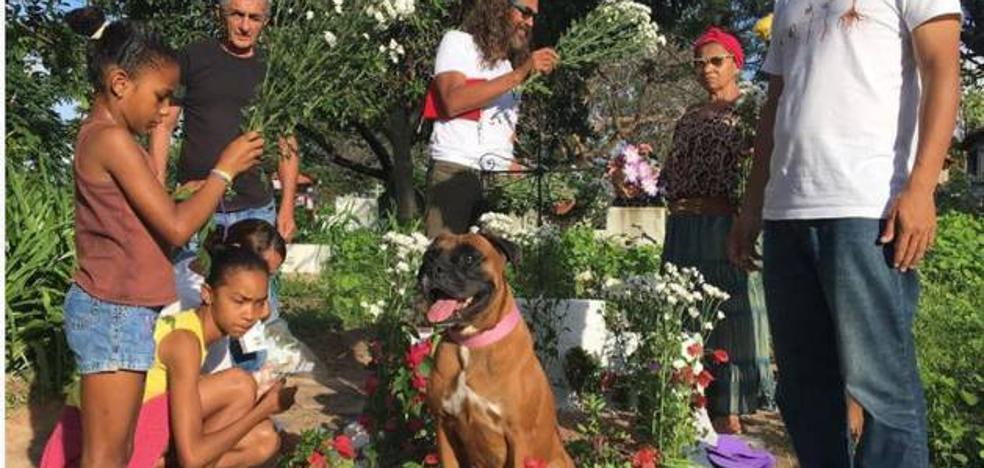 Belinha, la perra que pasó toda la noche junto al ataúd de su dueña