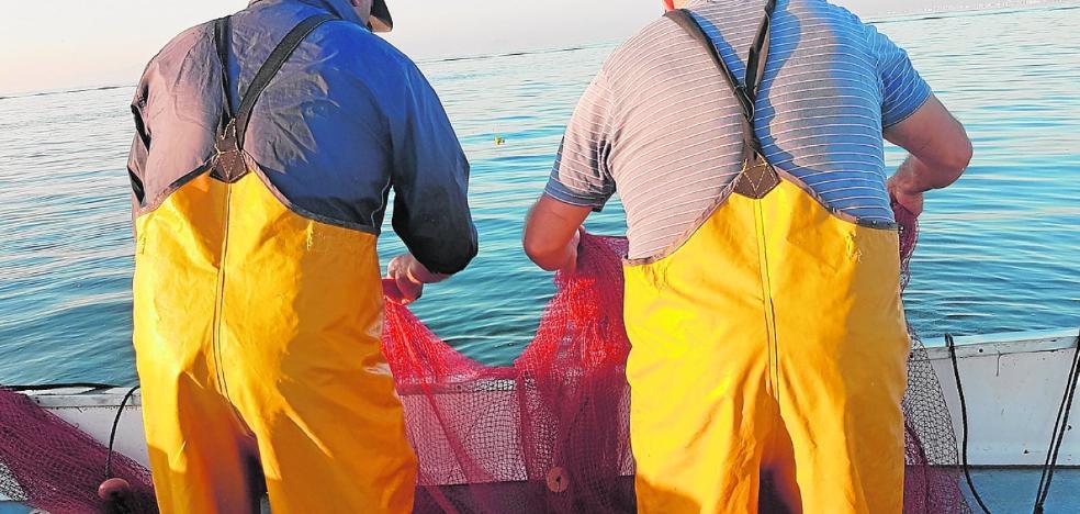 Los pescadores ensayan 'guarderías de alevines' para evitar que mueran al ser devueltos al mar