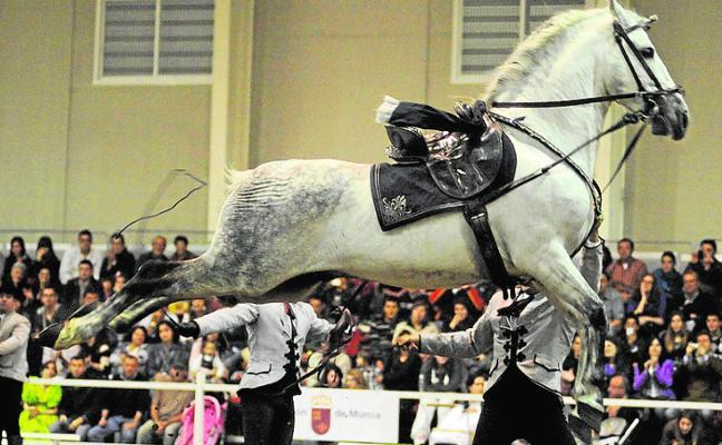 Equimur reunirá en Ifepa a los mejores caballos de pura raza