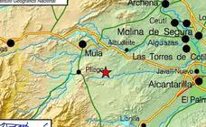 Un terremoto de 4,1 grados sobresalta a gran parte de la Región
