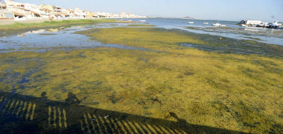 La Fiscalía recurre el 'despiece' de la causa sobre la investigación del Mar Menor