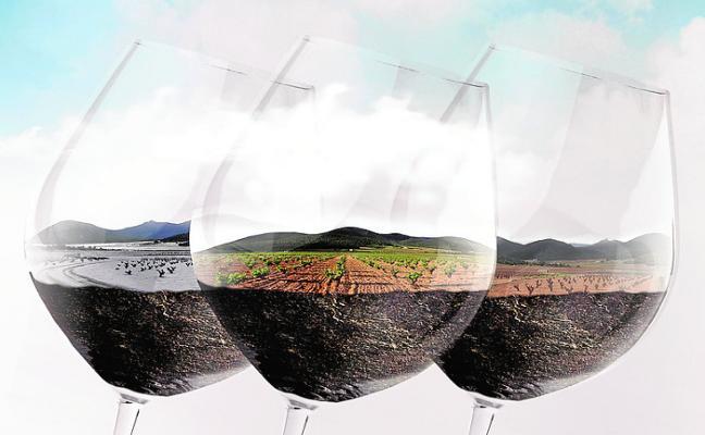 Diez bodegas exponen sus mejores vinos en la XI Muestra DOP Bullas