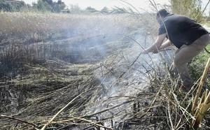 Un incendio arrasa 10.000 metros de caña de ribera y se queda cerca de algunas casas en Lorquí