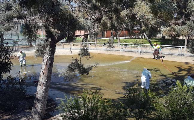 Murcia pone a punto sus lagos de cara a la primavera