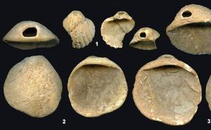 Las investigaciones de los materiales de la Cueva de los Aviones muestran a unos neandertales más 'humanos'