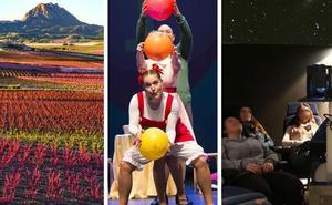 Floración, musicales, estrellas y circo